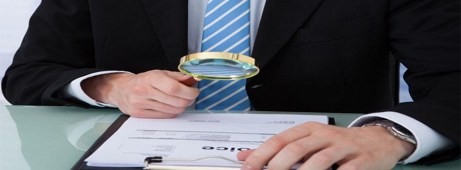 Single fraud investigation service 2015